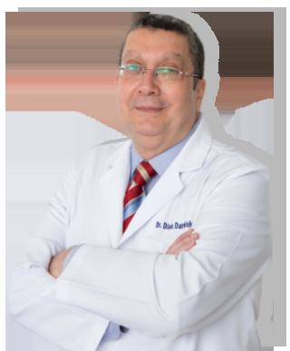 Dr. Diaa Eldin Darwish Aly Gamil