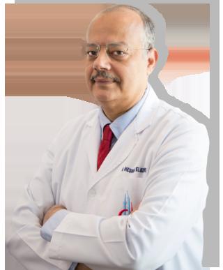 Dr. Hecham Mohamed EL- Hizzawi